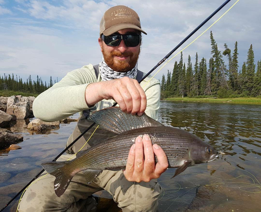 Arctic Grayling Fishing Northwest Territories