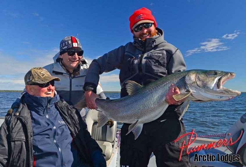 Lake Trout Great Bear Lake 2018