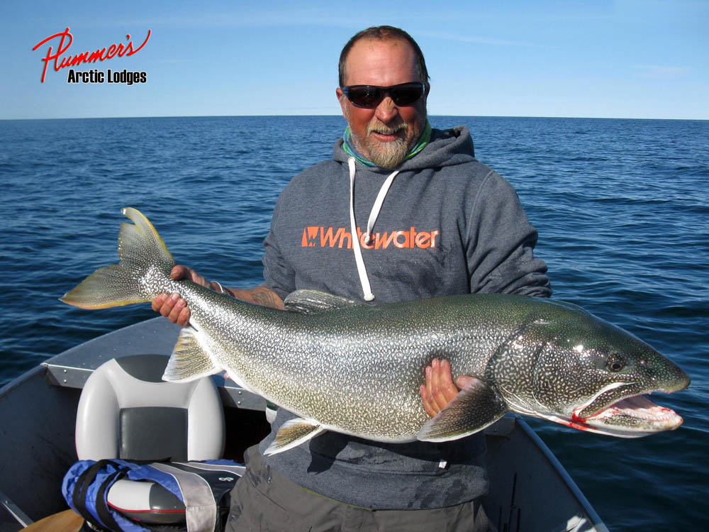 How to fish for lake trout up north