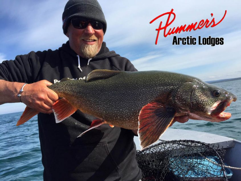 Plummers Arctic Fishing Lodges Lake Trout