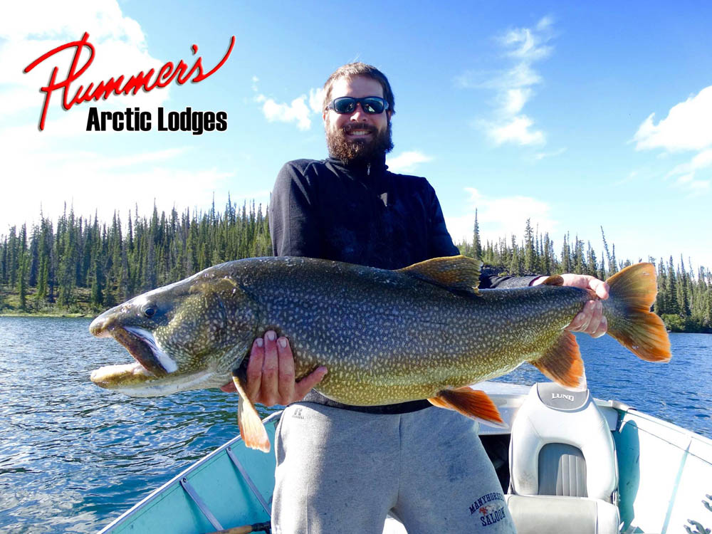 Fish for lake trout in Northwest Territories