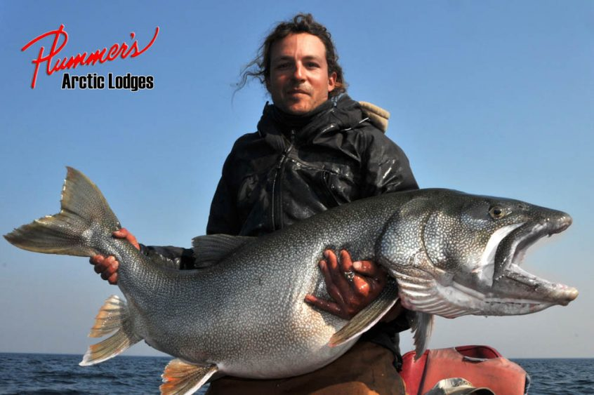 Monster lake trout fishing at Plummer's Arctic Lodges