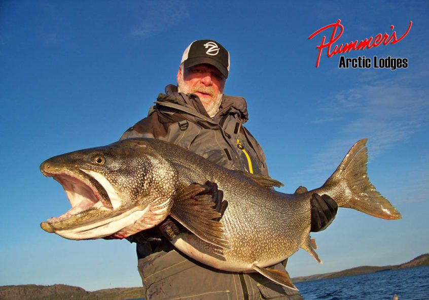 Trophy Lake Trout Fishing in the Arctic
