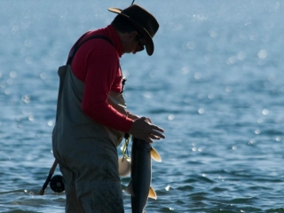 Summer fly fishing in the Canadian arctic