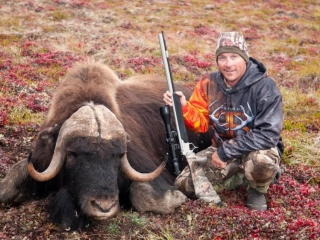 Hunting for musk ox at Plummer's Arctic Lodge