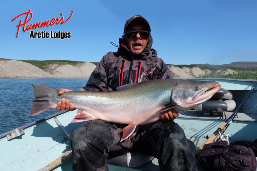 Plummer's Arctic Fishing Lodges - Arctic Char