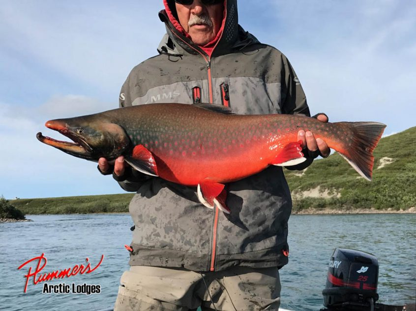 Plummer's Arctic Lodge - Arctic Char Fishing